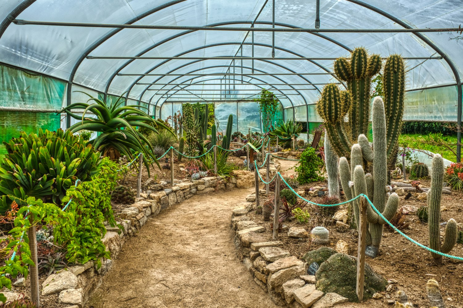 Cactus pavilion in the botanical garden of Roscoff
