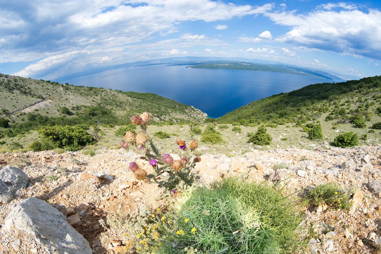 Die Landschaft auf Cres erinnert an einen Mix aus Norwegen und Griechenland