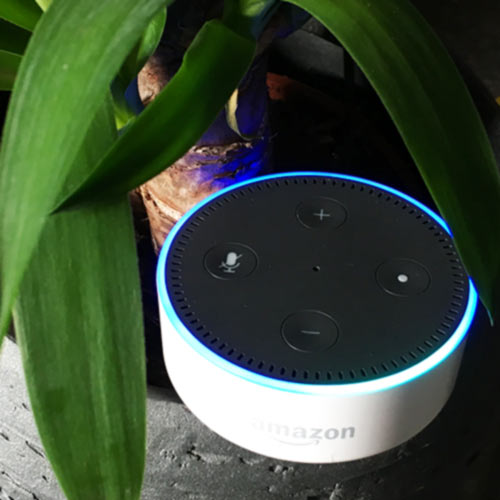 thumb amazon echo