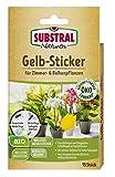 Substral Naturen Gelbstecker, Gelbsticker, insektizidfreie Leimfallen zum Schutz von Zierpflanzen, 15 Stück
