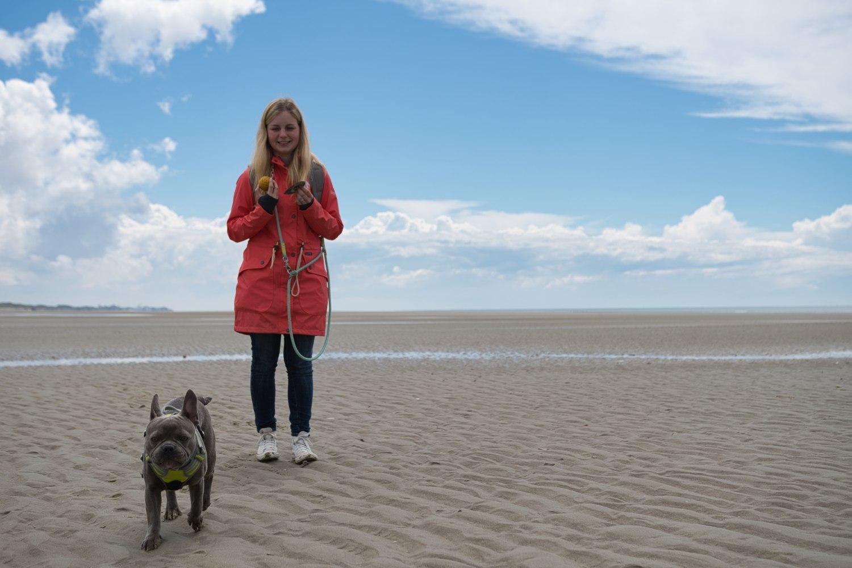 """Unser Hund """"Trüffel"""" hat Spaß am breiten Strand von Stella Plage"""