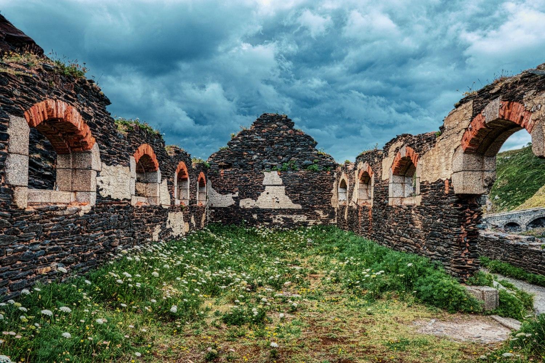 """Die Ruinen auf der """"Îlot des Capucins"""" wurden von Flora und Fauna erobert"""
