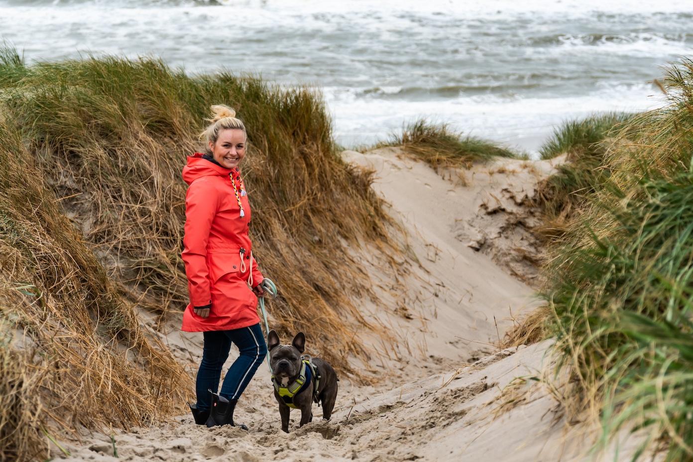 Strandwanderung mit Hund