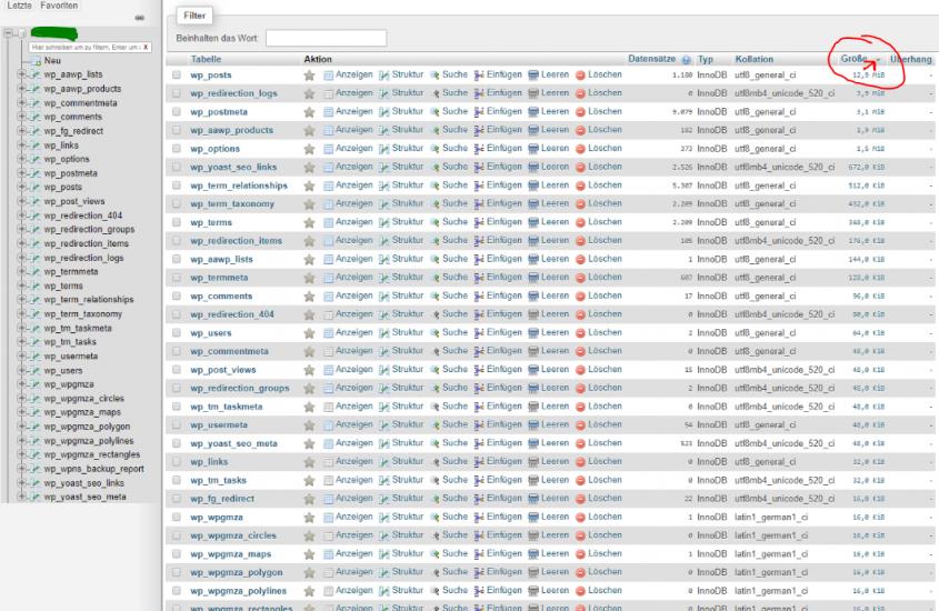 WordPress Datenbank sehr groß, Tabelle WP_OPTIONS riesig