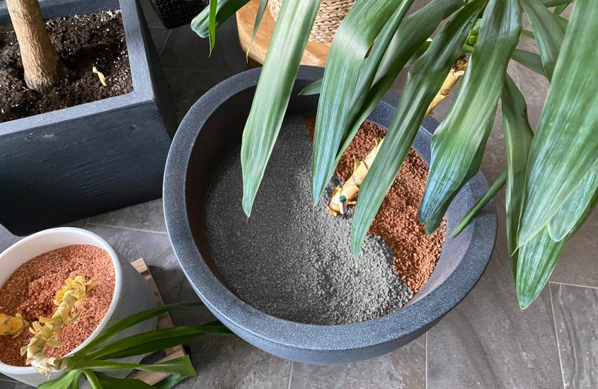 Plant granules – Is that also available in beautiful? The grey alternative
