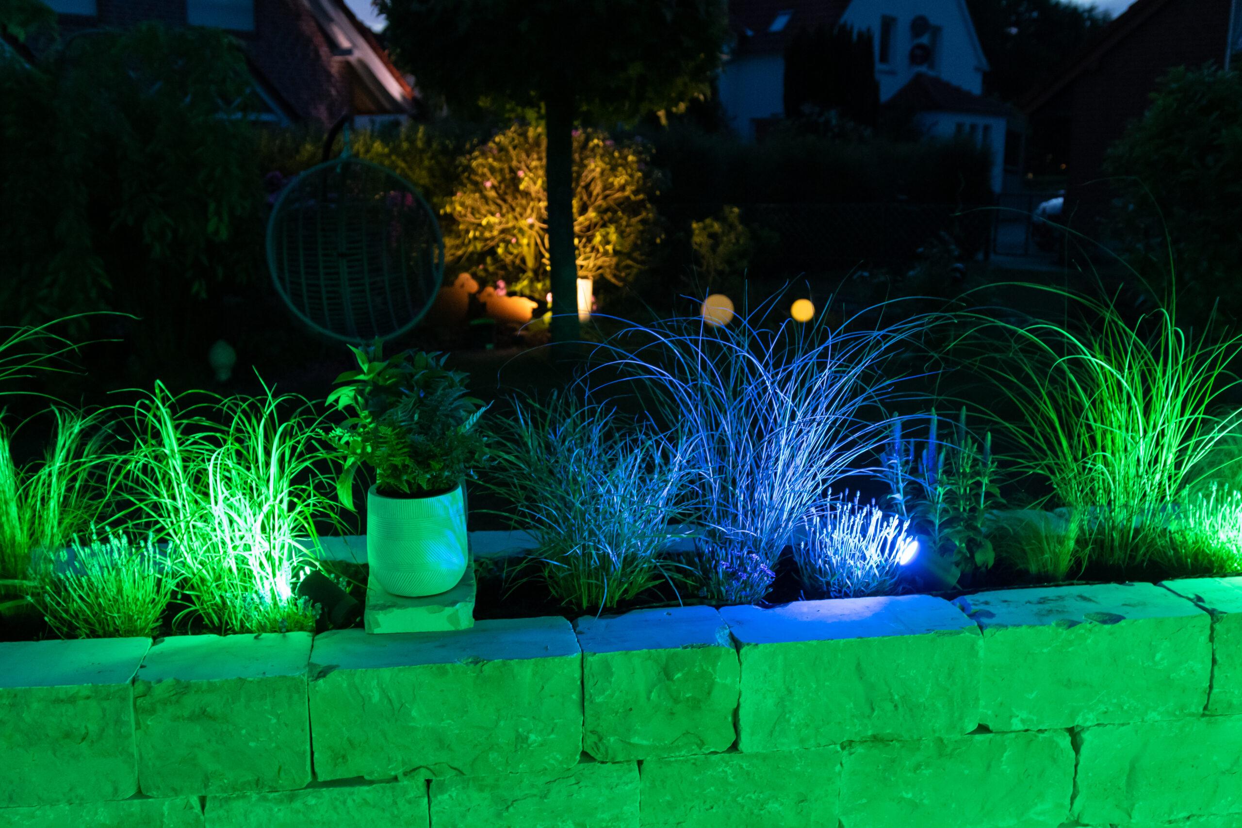 Gartenambientebeleuchtung mit Philips Hue: Gruppe 1 leuchtet grün, Gruppe zwei leuchtet blau.