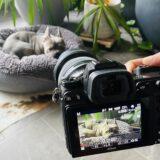 Nikon Z6 und Z6 II in camera 4K Video Einstellungen – Brilliantes Videomaterial Schritt für Schritt erklärt